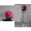 Virág krizantém 2 virág szár 80 cm