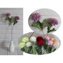 Krizantém pompom virág 2 virág a száron (magasság