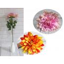 Fiore di dalia ombreggiato (alto 65 cm, fiore 19 c