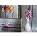 Fiore di fresia singolo 35x10 cm, mix di colori
