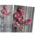 Virágszár virág alma rózsaszín 1 m