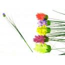 groothandel Tuin & Doe het zelf:Bloem grasspriet 1 stuk
