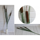 wholesale Plants & Pots: Brown cane flower sticks 3 piece with grass tall