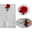 Virág rózsa fejlett szár keverék színe (magassága