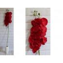 Stelo lungo fiore orchidea 105 cm # 182 -rosso