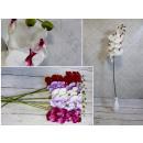 Stelo fiore orchidea 95x34 cm