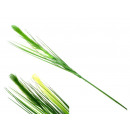 Großhandel Pflanzen & Töpfe:Grass Blume 80 cm