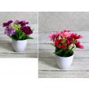 grossiste Plantes et pots: Fleur dans un pot 20x9 cm