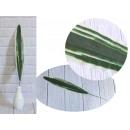 wholesale Artificial Flowers: Leaf long green-white stem 60x8 cm - 1 piece
