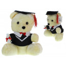 wholesale Dolls &Plush: Mascot, soft toy, student teddy bear, student 30 c