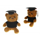 wholesale Dolls &Plush: Mascot, soft toy, student teddy bear, student 20 c