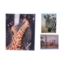 wholesale Printers & Accessories: Picture printed 25x20 cm (safari)