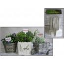 Le etichette orco per le piante in vaso per la den
