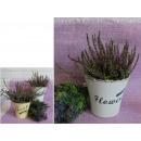 wholesale Flowerpots & Vases: Plastic flower casing Vintage round 13.5