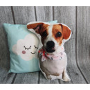 wholesale Cushions & Blankets: Pillow dog, mix cat about 35-40 cm