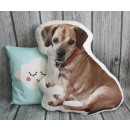 wholesale Cushions & Blankets: Pillow dog, mix cat about 50-60 cm