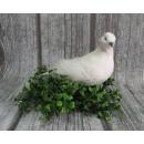 Vögel Hochzeitstauben, Hochzeit 21x8,5 cm