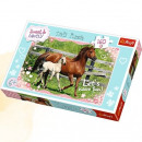 wholesale Toys: Puzzle 160  afternoon walk sweet & lovel
