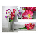 Csokor orchidea 10 virág (magasság 53 cm) keverjük