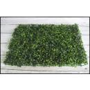 wholesale Plants & Pots: Grass, boxwood wiper 40x60 cm
