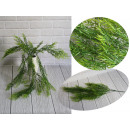 Green branches, bouquet hanging 5 stems 80 cm -