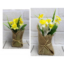 Narciso in vaso 3 rami 7 fiori 18x6 cm -
