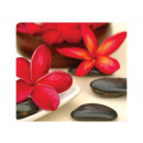 Mauspad Fellowes Earth Series Wellness Blumen 59