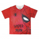 SPIDERMAN - short sleeve t-shirt premium
