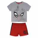 wholesale Sleepwear: SHORT PIJAMA COTTON Spiderman