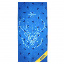 POLYESTER HARRY POTTER towel