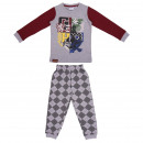 mayorista Ropa / Zapatos y Accesorios: HARRY POTTER - pijama largo single Jersey , gris