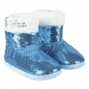 wholesale Shoes: FROZEN II - house slippers boot