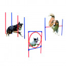 wholesale Pet supplies: Senior  Hundetrainigsset Agility 3