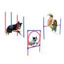 Senior  Hundetrainigsset Agility 3