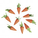 wholesale Toiletries: Cotton carrot, 18 mm, 10 pieces