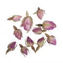 Fiori - boccioli di rosa tutto rosa, 7 g