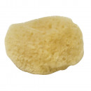wholesale Painting Supplies: Natural sponge set Fina, fine pored, 5 pieces