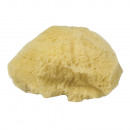 wholesale Painting Supplies: Natural sponge set Grass, fine-sized, 3 pieces