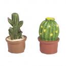 Polyresin kaktusz, ragasztóval, 6 db