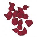 Streulätter-Rosen, burgundy, 41 pieces
