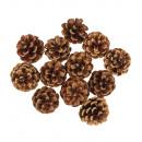 Pine cones, natural, 12 pieces