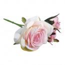 Rose pick, różowe,