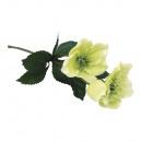 groothandel Kunstbloemen: Kerstroos met 2 bloemen & 1 knop, limoengroen,