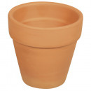 Terracotta pot,