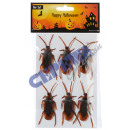 Cockroach, Set of 6