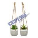 wholesale Artificial Flowers: Hanging plant 'succulent plant' 2 / s, ...