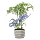 wholesale Artificial Flowers: Artificial flower fern in a pot, approx.65cmH