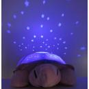 Turtle Nachtlicht