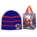 it's cold hat striped spider-man
