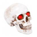Decoration skull lamp - white